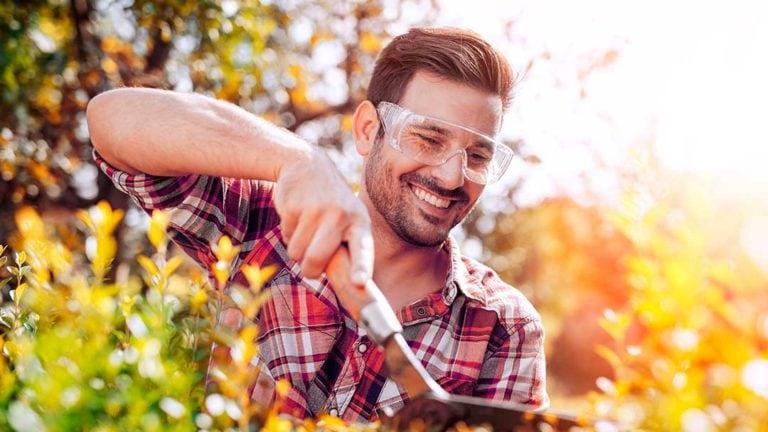 Jardinage travaux d'automne